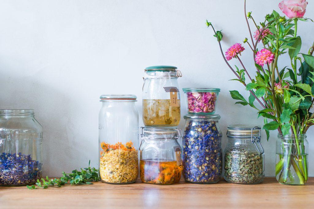 Kracht Planten Huis : The plant pharmacy koken met de kracht van de natuur lisette